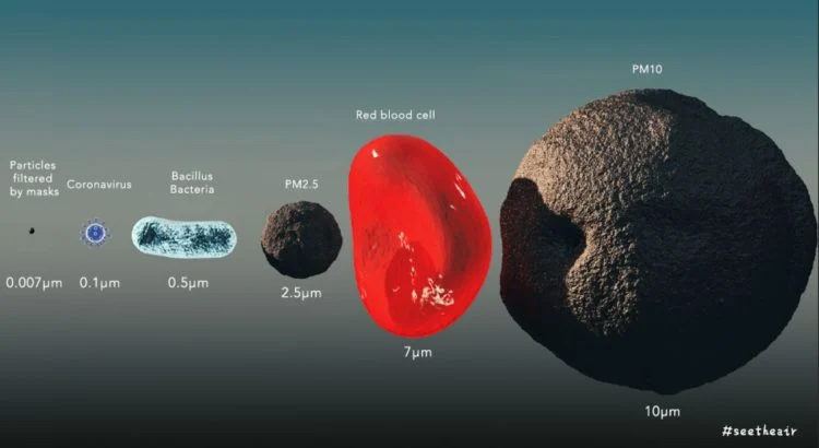 Kích thước vi rút, bụi mịn 2.5 micro mét và 10 micro mét